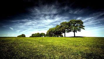 Бесплатные фото поле,трава,зеленая,деревья,кроны,небо,облака