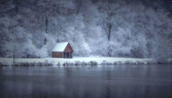 Бесплатные фото зима,озеро,лес,деревья,домик,снег,пейзаж