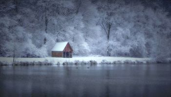 Photo free winter, lake, forest