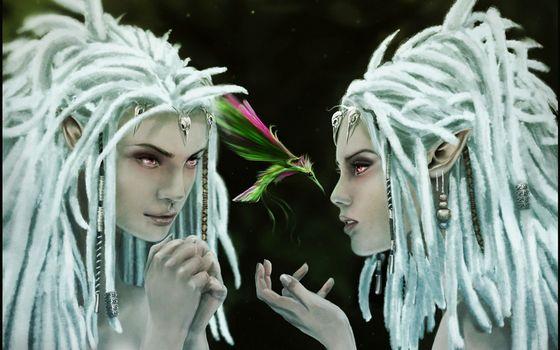 Фото бесплатно девушки, эльфы, волосы, украшения, птица, цветная