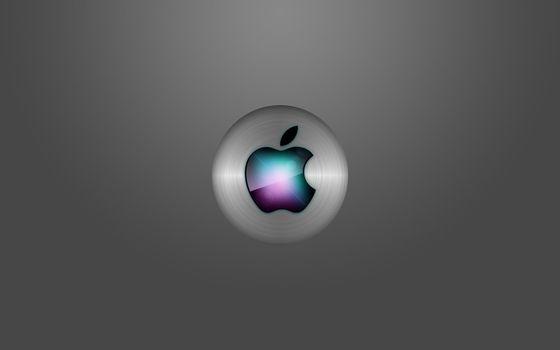 Photo free gray background, splash, emblem