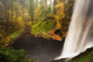 Фото бесплатно осень, лес, деревья, река, водопад, пейзаж