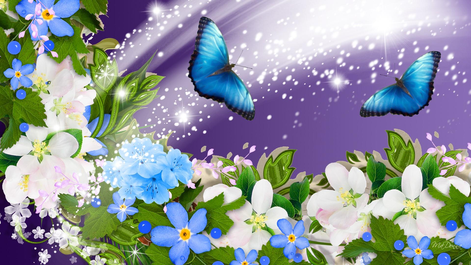 Обои цветы, бабочки, art