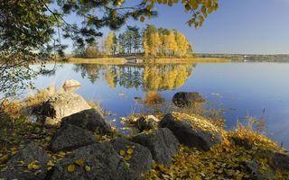 Бесплатные фото осенний день,остров,река,берег,камни,листопад