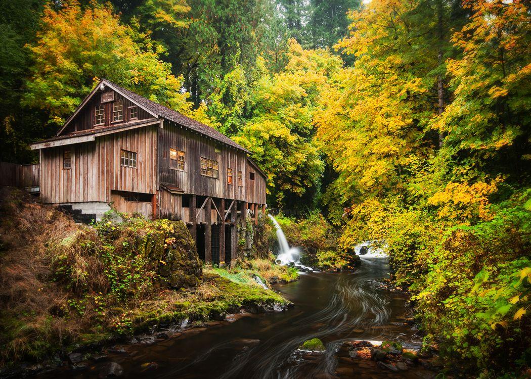 Фото бесплатно Cedar Creek Grist Mill, Woodland, Washington, Вудленд, штат Вашингтон, река, мельница, лес, осень, пейзажи
