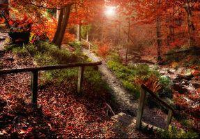 Фото бесплатно Solwaster, Бельгия, осень