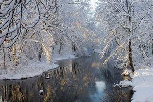 Бесплатные фото зима,река,деревья,иней,ветки,пейзаж