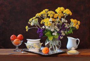 Фото бесплатно абрикосы, цветы, натюрморт