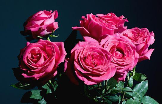 Заставки букет,розы,бутоны