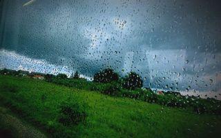 Бесплатные фото окно,стекло,капли,дождь,вид,трава,деревья