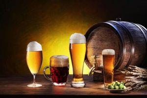 Бесплатные фото пиво,бочка,кружка,бокалы,хмель,солод,напиток