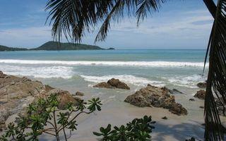 Бесплатные фото тропики,побережье,камни,пальмы,море,волны,горизонт