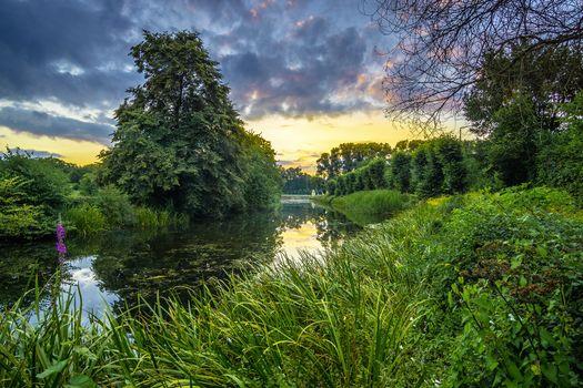 Фото бесплатно В садах дворца Аугустусбург в Брюль, Германия, сады