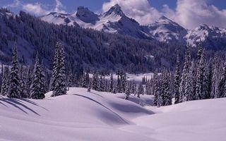 Бесплатные фото зима,горы,деревья,снег,сугробы,облака