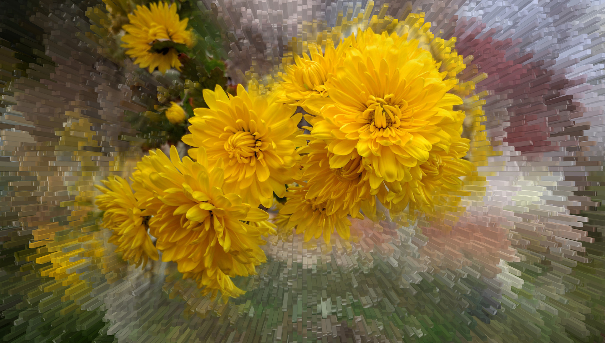 обои цветочная фантазия, цветы, букет, флора картинки фото