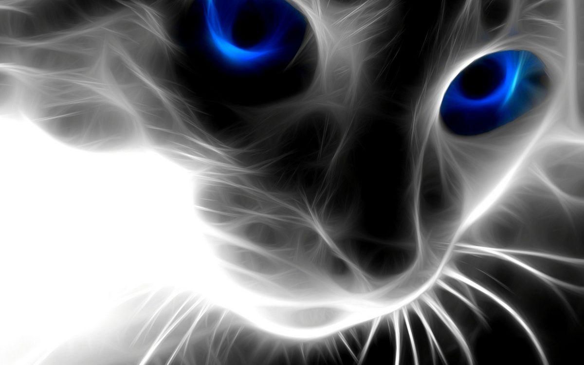 Фото бесплатно графика, кошка, морда, глаза, синие, усы, 3d графика