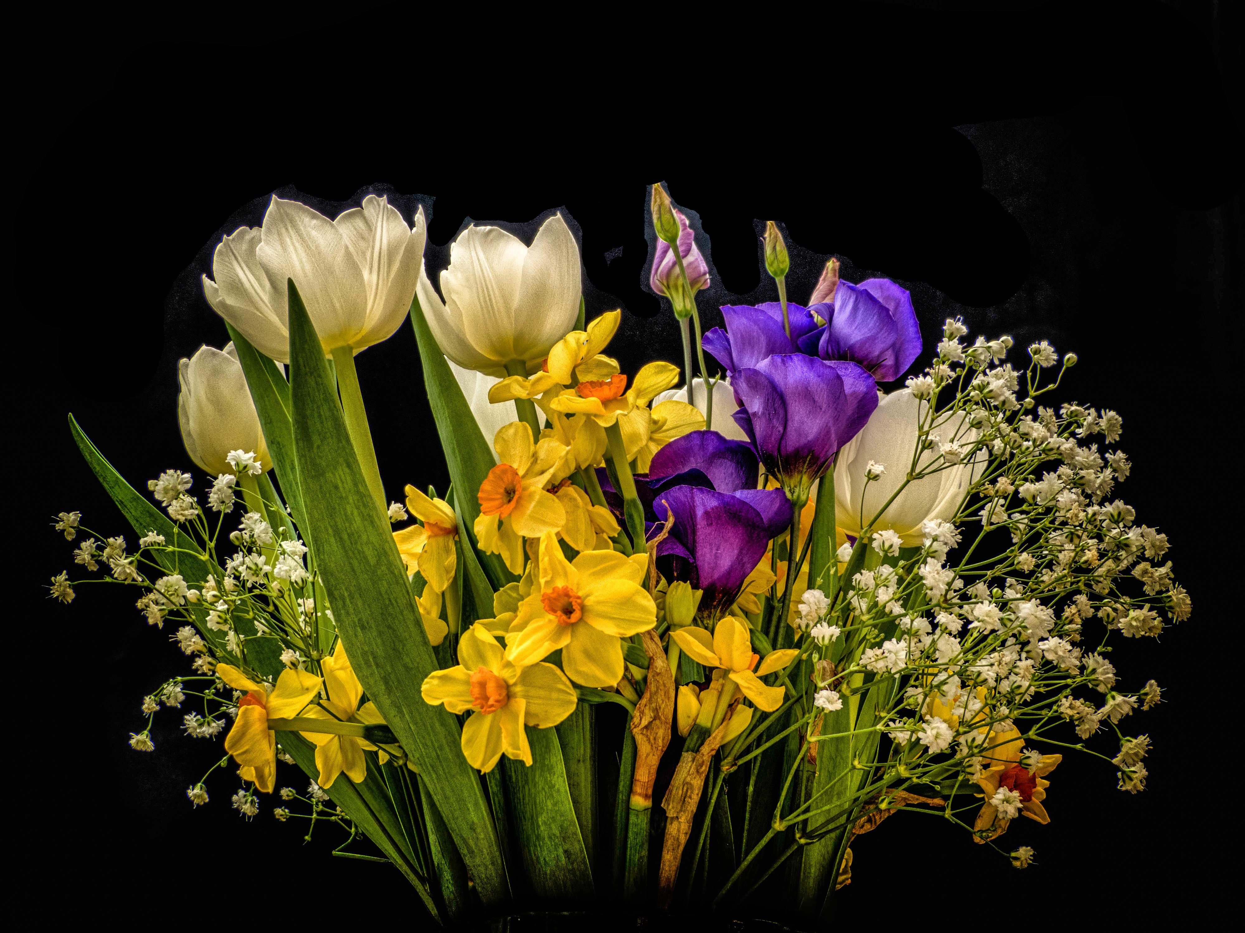 Обои цветы, букет, флора