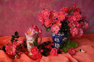 Фото бесплатно натюрморт, ваза, цветы
