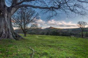 Заставки поля,холмы,закат,деревья,пейзаж
