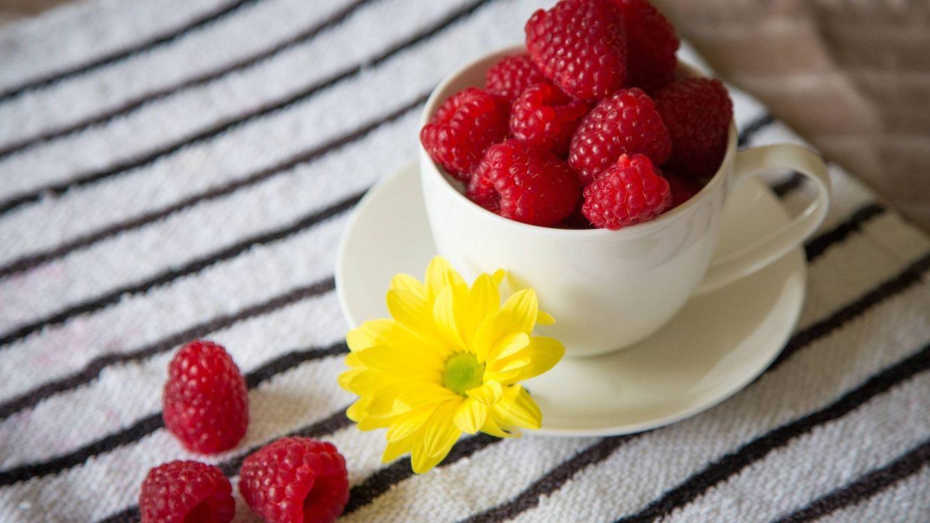 Фото бесплатно ягода, малина, красная, чашка, блюдце, цветок, еда