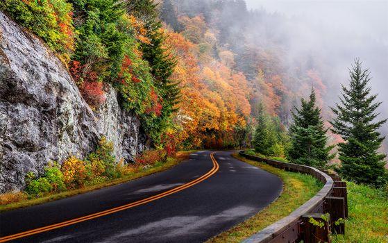 Фото бесплатно Северная Каролина, осень, дорога