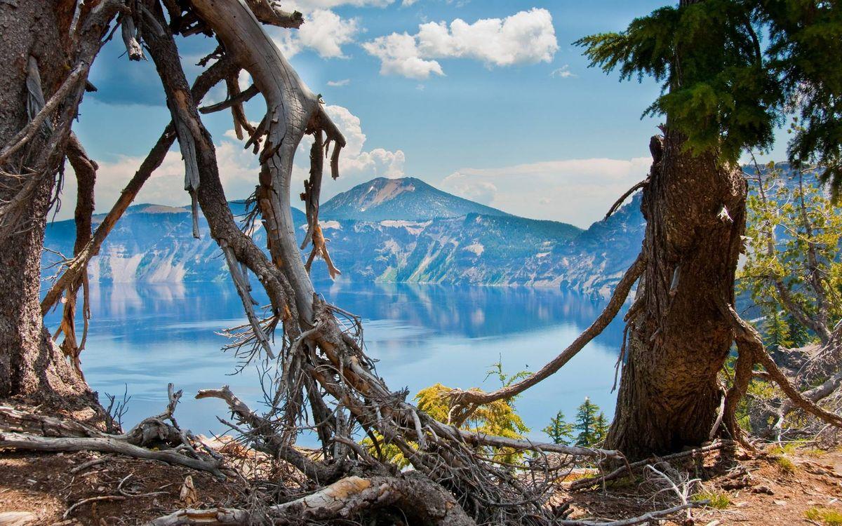 Фото бесплатно деревья, ветви, коряги, озеро, горы, небо, облака, природа - скачать на рабочий стол