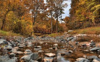 Бесплатные фото речка,мост,осень,лес,камни