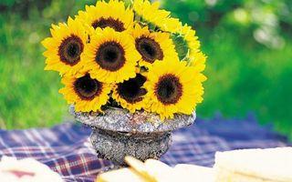 Фото бесплатно ваза, мрамор, подсолнухи