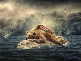 Бесплатные фото море, бревно, медведь, девочка, дельфины, art