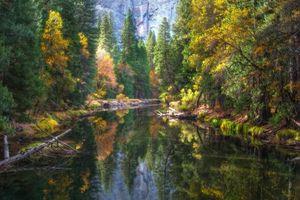 Бесплатные фото Yosemite National Park,Merced River,осень,река,горы,лес,деревья