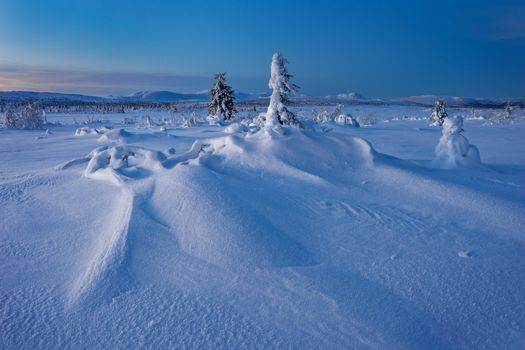 Photo free landscapes, winter field, snow