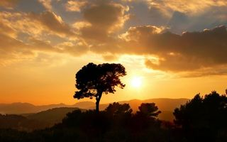 Бесплатные фото вечер,горы,деревья,небо,облака,солнце,закат