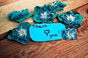 Фото бесплатно обои, цветы, надпись