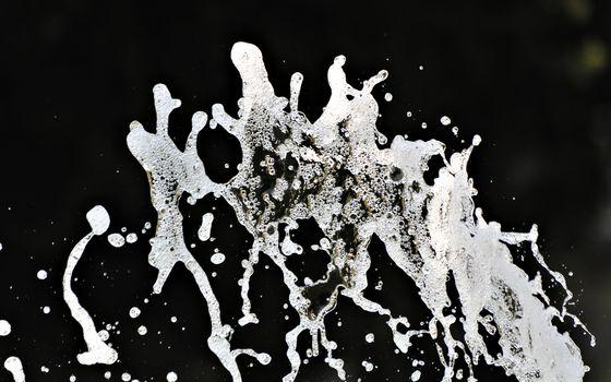 Фото бесплатно вода, всплеск, брызги