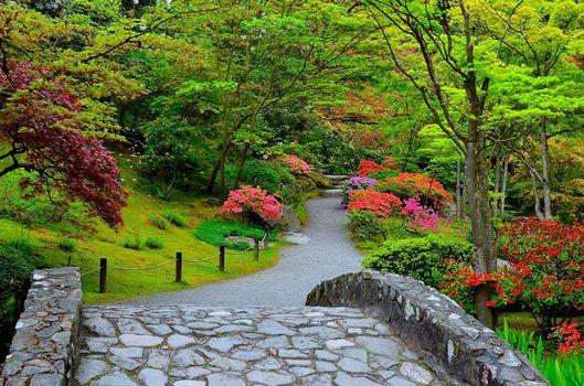 Seattle, Japanese Garden, сад, парк, дорога
