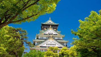 Обои дом, здание, деревья, япония