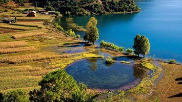 Фото бесплатно озеро, берег, вода, деревья, поля, дома
