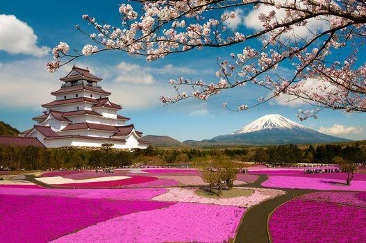 Заставки Япония, Кумамото, поле