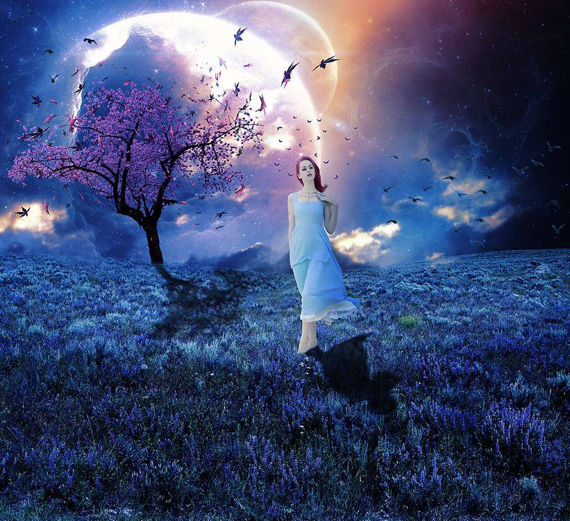 Фото бесплатно закат, поле, девушка, дерево, планета, птицы, сюрреализм, фантасмагория, 3d, art, рендеринг