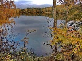 Фото бесплатно осень, озеро, деревья, пейзаж
