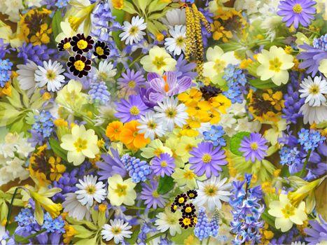 Заставки цветы, цветочный фон, флора