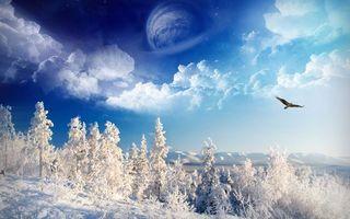 Бесплатные фото зима,горы,деревья,снег,птица,полет,небо