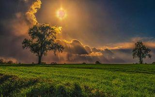 Бесплатные фото лето,поле,трава,деревья,небо,тучи,солнце
