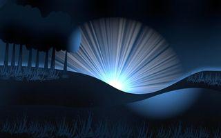 Бесплатные фото восход, солнце, деревья, ночь, трава
