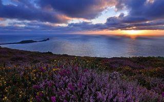 Заставки побережье,трава,цветы,море,горизонт,небо,облака