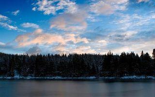 Бесплатные фото зима,река,берег,снег,лес,деревья,небо