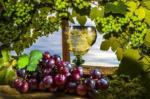 Фото бесплатно виноград, бокал, вино, натюрморт