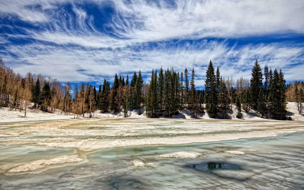 Фото бесплатно лед, озеро, елки - на рабочий стол