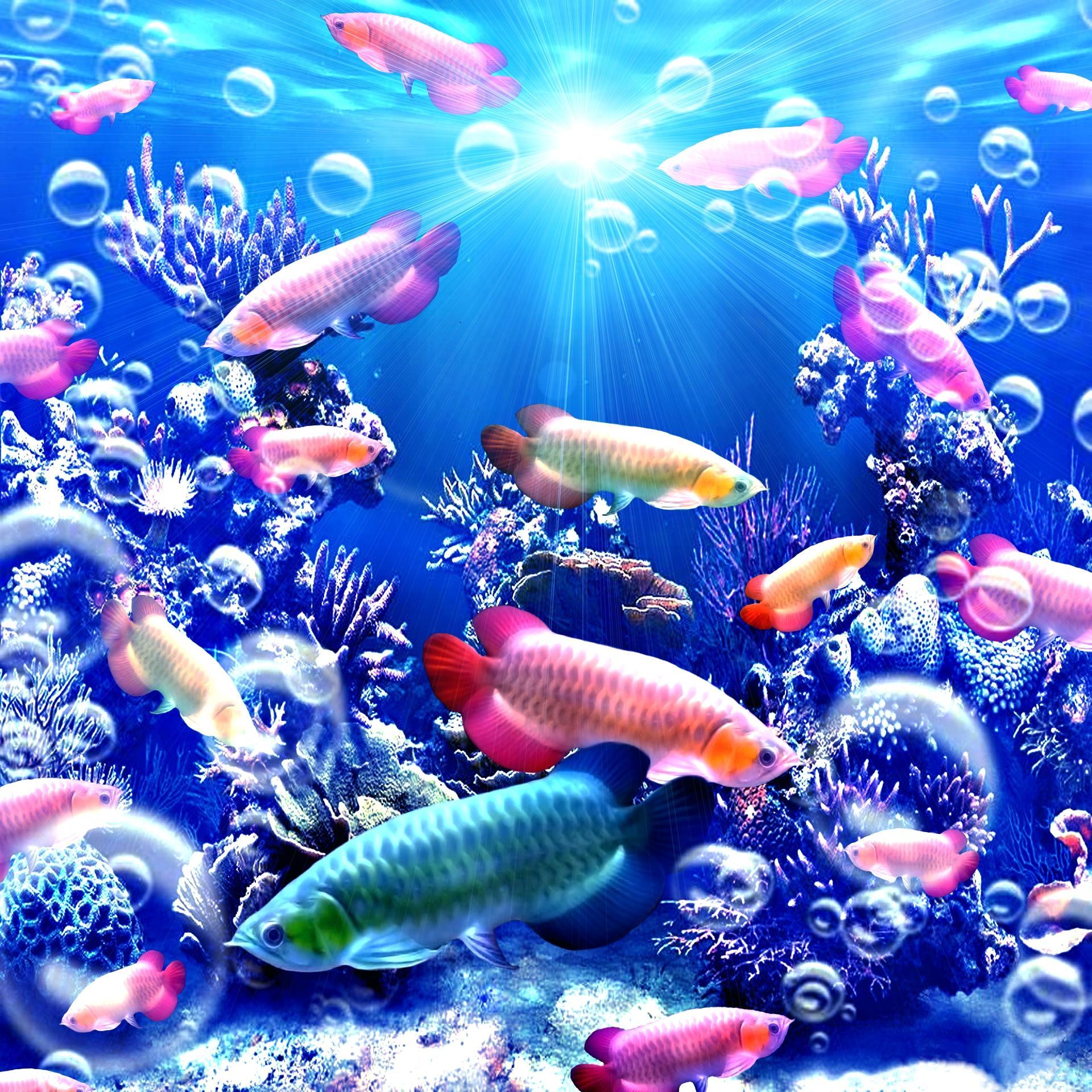 Обои море, морское дно, подводный мир, рыбы