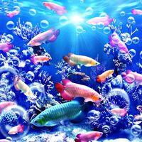 Бесплатные фото море,морское дно,подводный мир,рыбы,art